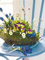 Spring perfection | Pansies | Pinterest