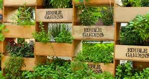 edible garden wall garden ideas pinterest