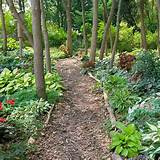outline walkway gardens ideas woodland gardens gardens paths garden