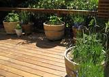 ... in a wine barrel. Mix-in with raised garden beds for a neat effect