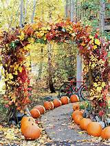 garden path lined with pumpkins