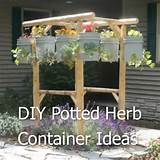 diy potted herb container ideas homestead survival
