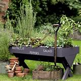 40 inspiring diy herb gardens diy wooden raised bed with a stencil