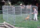 sized outdoor dog kennels which provide a large area for your dog