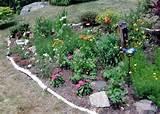 butterfly garden butterfly garden becomes edible garden pinterest