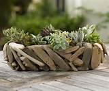 35 Indoor And Outdoor Succulent Garden Ideas » Photo 13
