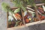 ... Gardens Vege, Food Junkie, Csa Farms, Gardens Farms, H H Blog, Farms