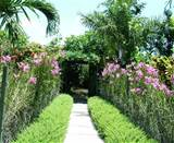 the tropical garden for example is dominated by the type of plants