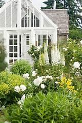Vintage Greenhouses & Potting Sheds - Victoria Elizabeth Barnes