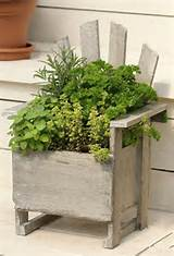 ... Herb Container Gardens ~ Pots & Planters {Saturday Inspiration & Ideas