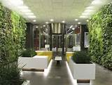 Indoor Garden Design Ideas In Indoor Garden In Wall For Living Room ...