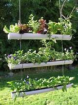 under the table and dreaming herb garden inspiration ideas over 50