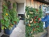 gardening landscaping vertical herb garden vertical herb garden