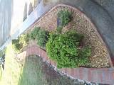 brick edging garden ideas pinterest