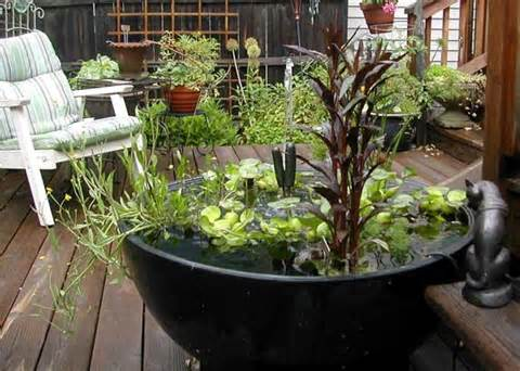 to build great container water garden smart home decorating ideas