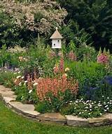Butterfly garden idea | Gardening Ideas | Pinterest