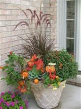 fall container idea garden love pinterest