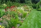 designs for gardens - perennial flower garden design1152 x 788 321 kb ...