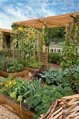 Patio vegetable garden | For the Home - Deck Ideas, Curb Appeal and O ...