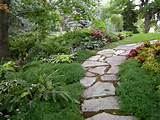 garden pathway with dashes of color