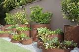 Raised Bed Vegetable Gardening - Landscaping Network