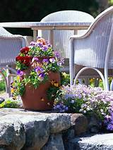 Early Spring Container Gardens - Walpole Outdoors
