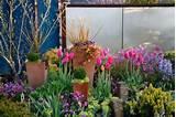 Spring @ Garden Diva Designs | Garden Goodness | Pinterest