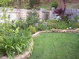 The evergreen may be the simplest backyard landscaping ideas which ...