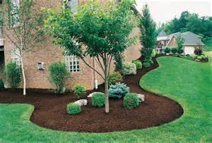 small evergreen trees for landscaping landscaping trees landscape