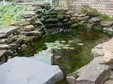 ... Bricks Wall, Ideas Koi, Design Ideas, Koi Ponds, Koi Fish Ponds, Ponds