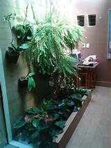 indoor garden idea | Indoor garden | Pinterest