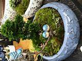... mini garden | Miniature Fairy, Gnome, etc. Garden ideas | Pi