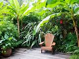 tropical garden retreat landscaping ideas and hardscape design