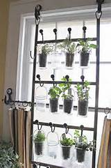 indoor garden from hooks and rods source