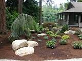 No Grass Landscaping Ideas | dead grass no problem grass paint wow ...