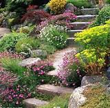 mediterranean garden design on pinterest