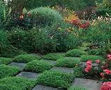 Thyme Square | Secret Garden Ideas | Pinterest