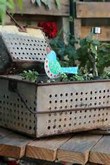 rustic gardens garden ideas pinterest