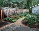 19 results for redwood trellises