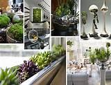 inspirative indoor garden design desain taman kecil didalam rumah
