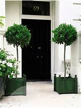 Back to Garden Planters and Pots Landscaping Ideas Main: