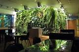 vertical-garden-design-14.jpg
