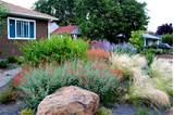 drought tolerant garden accented with boulders and gravel. This garden ...