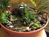 Garden Camp for Preschoolers | The Mini Garden Guru - Your Miniature ...