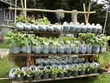 great ideas for school or community garden projects wefollowpics