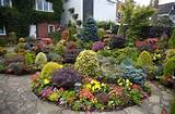23 Amazing Flower Garden Ideas | Gardeny goodness | Pinterest