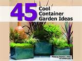 45 cool container garden ideas diy all in one
