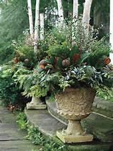 ... spring - Refined - Container Gardening - Gardens - Canadian Gardening