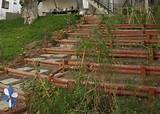 Photo Journal - Hillside Landscaping Vol 1 - Terracing with Wood