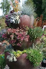 container garden~succulents | garden ideas | Pinterest